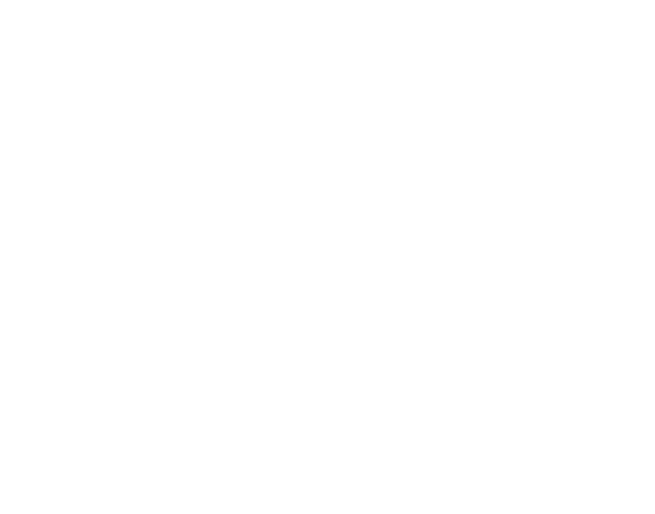 Strategie Austria